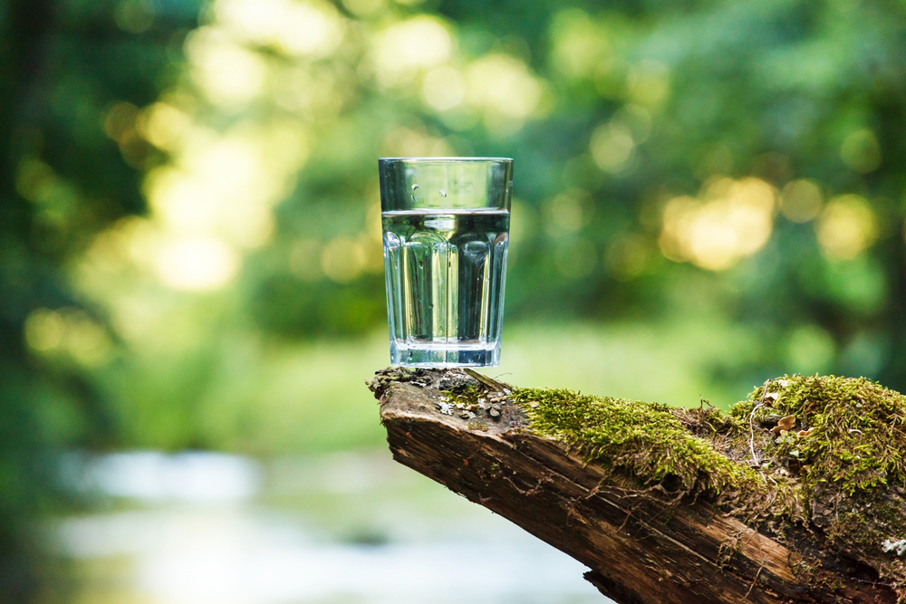 spring water At one of my local springs, i share with you a few strategies that are crucial in determining whether or not your local spring water is good to drink to find a spring in your area visit www.